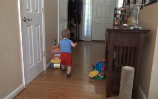 Развитие ребенка в 11 месяцев: что он уже умеет?