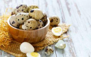 Перепелиные яйца ребенку: с какого возраста давать, как варить