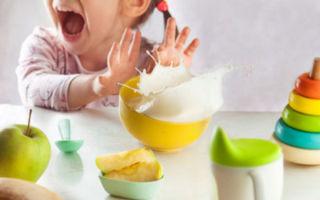 Почему возникает кризис двух лет у ребенка и что с этим делать