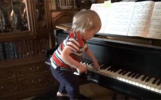 Что умеет ребенок в полтора года