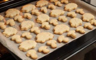 Вкусное и простое в приготовление домашнее печенье для ребенка