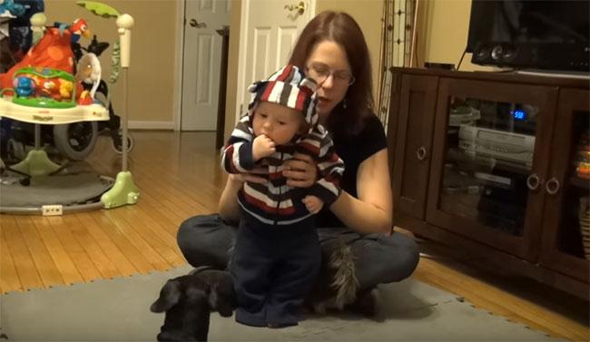 Пятимесячный ребенок учится стоять