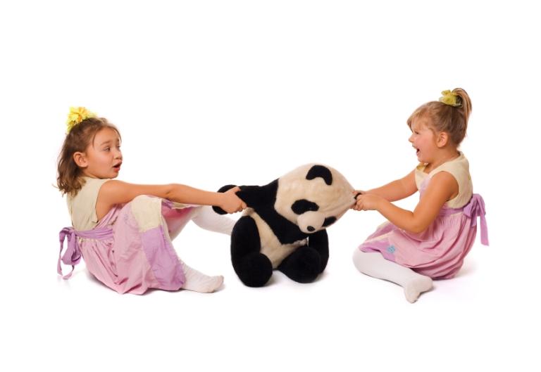 Девочки не могут поделить мягкую игрушку