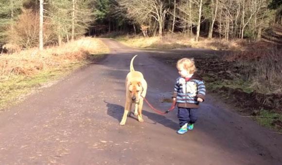 Прогулка малыша