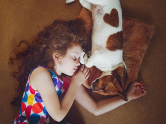Девочка спит с собакой, лежат вальтом