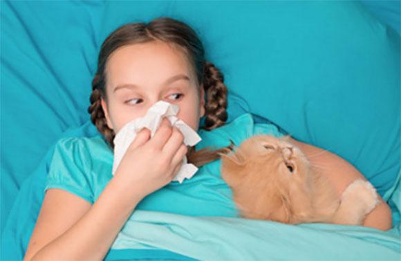 В постели лежит девочка с носовичком в руках, рядом расположился кот