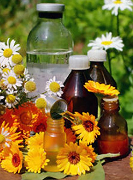 Настойки в бутылочках, рядом лежат ромашки и календула