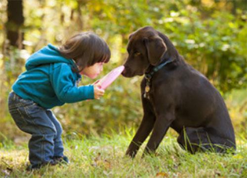 Ребенок бьет собаку по носу