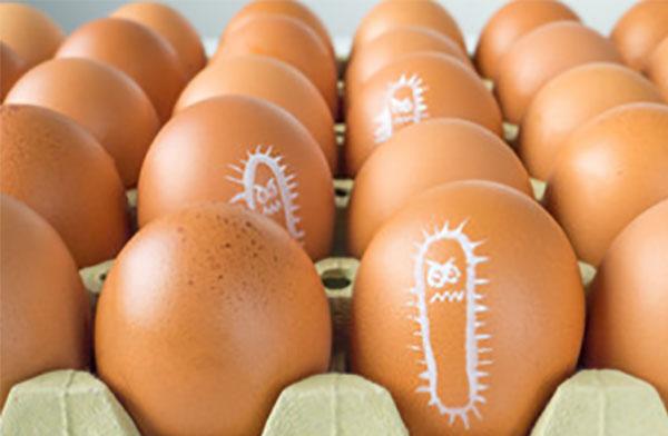 Лоток с яйцами. На скорлупе некоторых изображена бактерия
