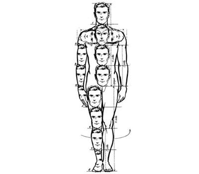Схематическое изображение человека с отмерением его пропорций с помощью голов