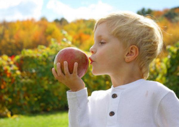 Мальчик на природе собирается укусить большое яблоко