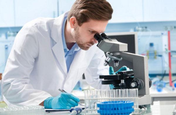 Лаборант смотрит в микроскоп, подсчитывает лейкоцитарную формулу