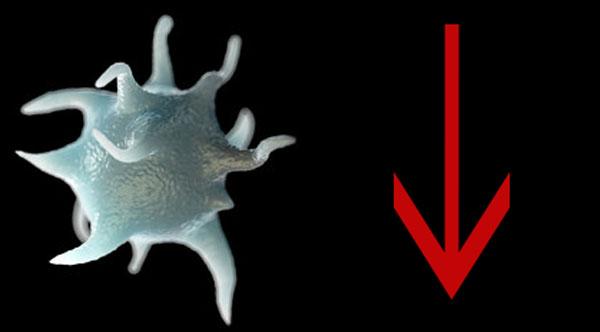 Тромбоциты понижены у ребенка в крови: причины, что это значит и что делать?