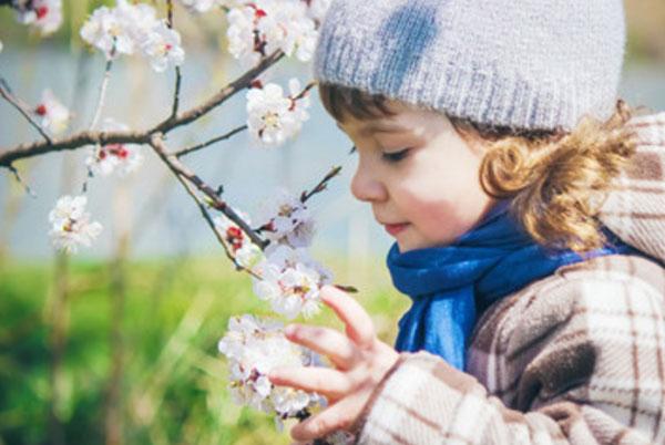 Девочка рассматривает цветочки на дереве