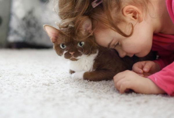 Девочка положила голову на кота, который сидит на полу